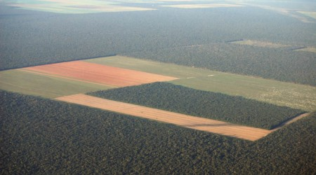 -Deforestation-In-The-Amazon-4052811-2